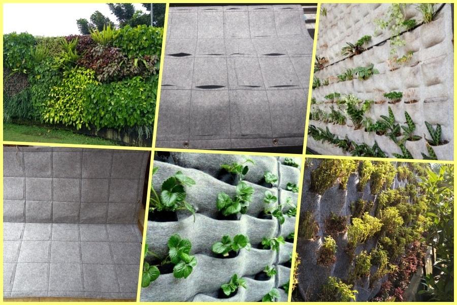 vertical garden murah